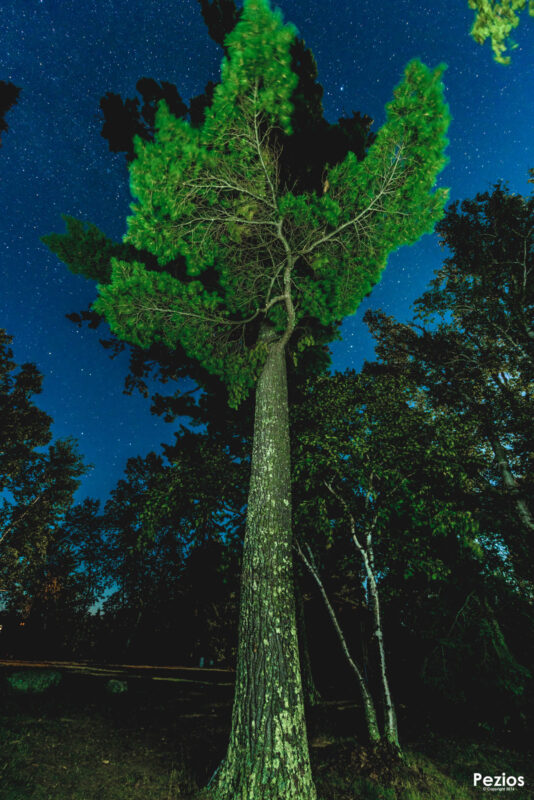 2016 Perseid Meteor Shower & Northern Lights